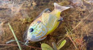 Livetarget Sunfish Lure