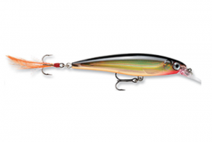 Rapala X-Rap Jerkbait XR10 Fishing Lure