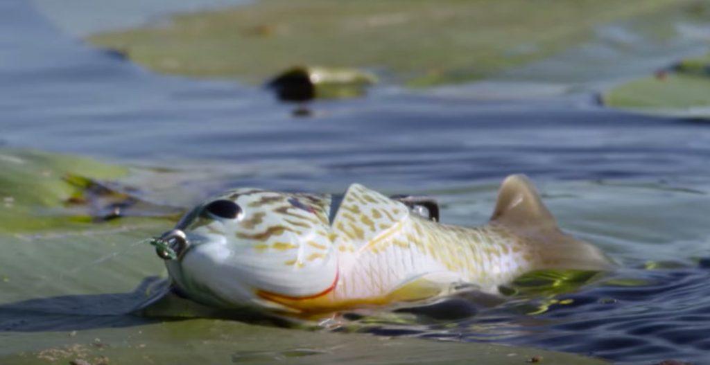Sunfish lure